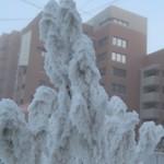 Самые холодные места и города в России