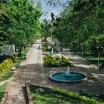 Самые красивые и интересные места Краснодара