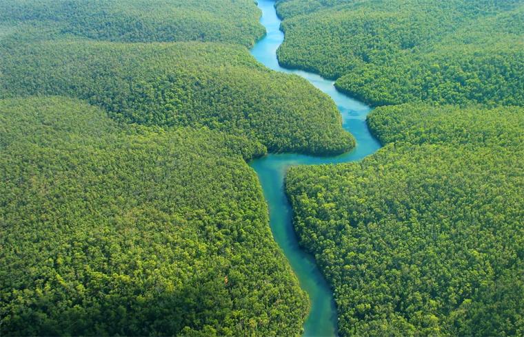 Амазонка течет