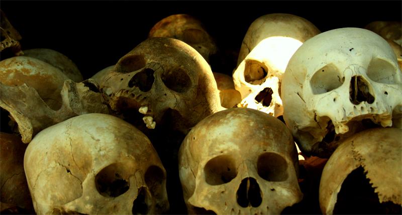 Много черепов