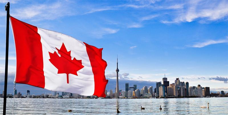Город и флаг