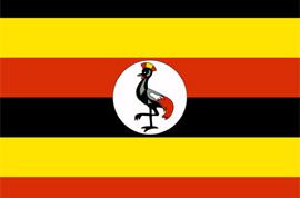 flag_ugaan608