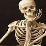 Интересные факты о костях человека