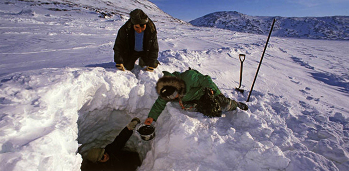 Сбор мидий подо льдом