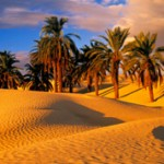 Интересные факты о пустыне Сахара