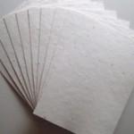 Самые интересные факты о бумаге