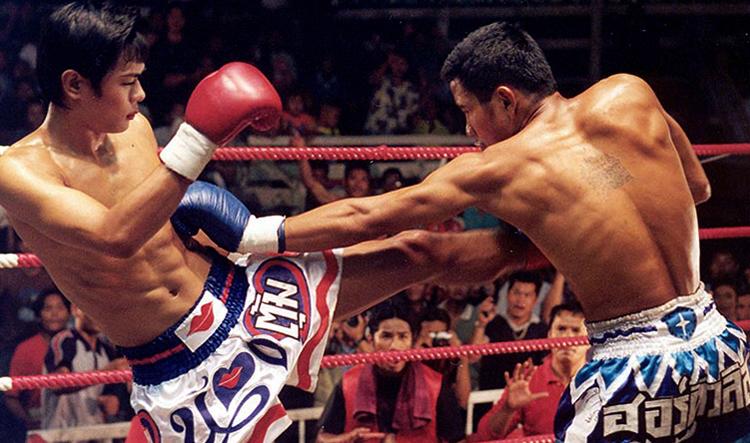 Прекрасный боксёр