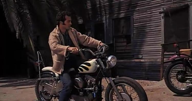 Дикари на мотоциклах
