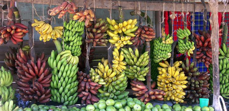 Много разных бананов