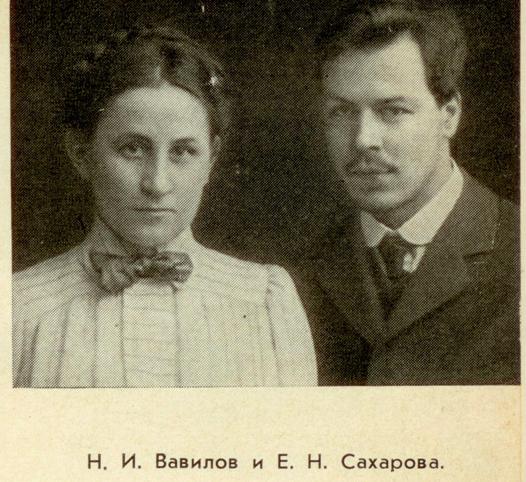 Вавилов и Сахарова