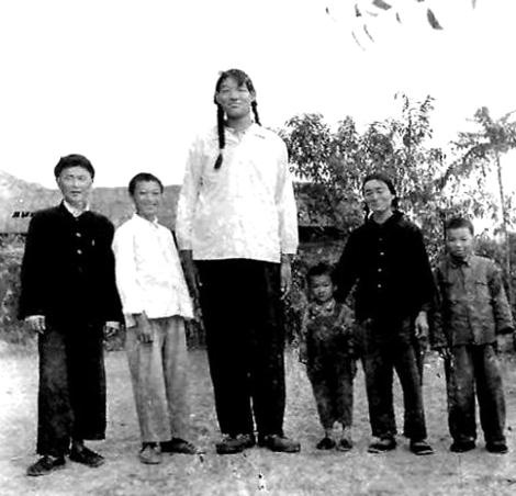 Цзен Цзинь-лянь