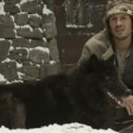 Лучшие фильмы про волков: список и описание