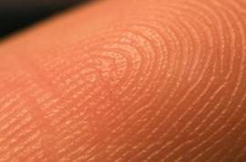 human_skin