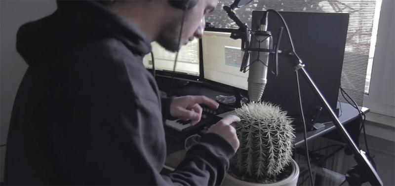 Кактус- музыкальный инструмент