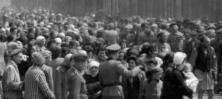 Один день в Освенциме