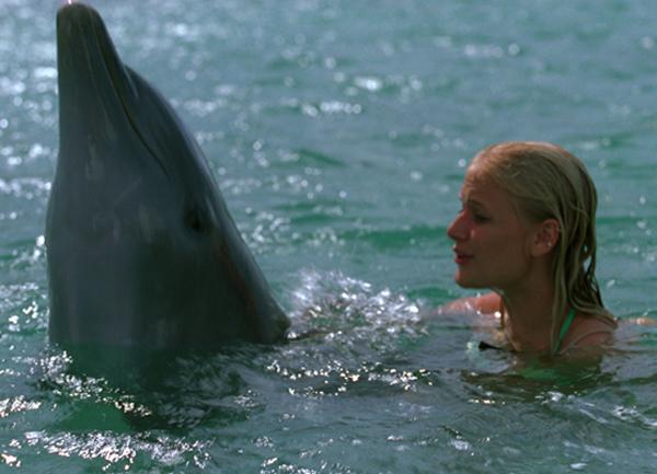 Глаз дельфина