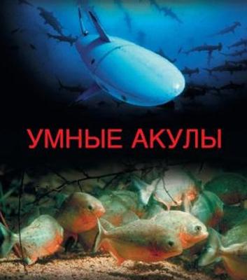 Подводные убийцы. Умные акулы. Пираньи