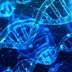 Интересные и удивительные факты о генетике человека