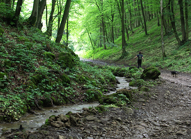 Национальный парк Аггтелек