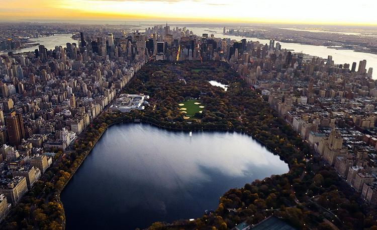 Парк «Зеленые легкие Манхеттена»