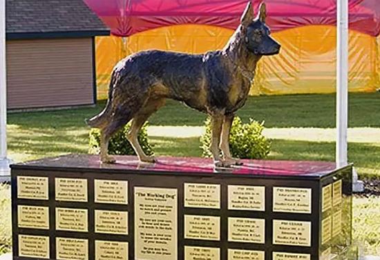 Памятник собакам в Оттаве