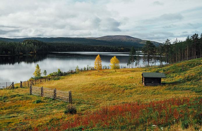 Национальный парк Лемменйоки, Лапландия