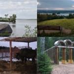Самые красивые места Ленинградской области