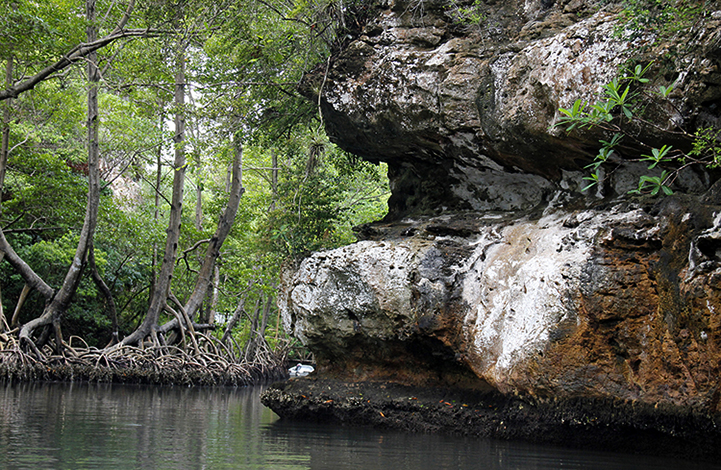 Национальный парк Лос-Айтисес