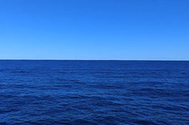 ocean55