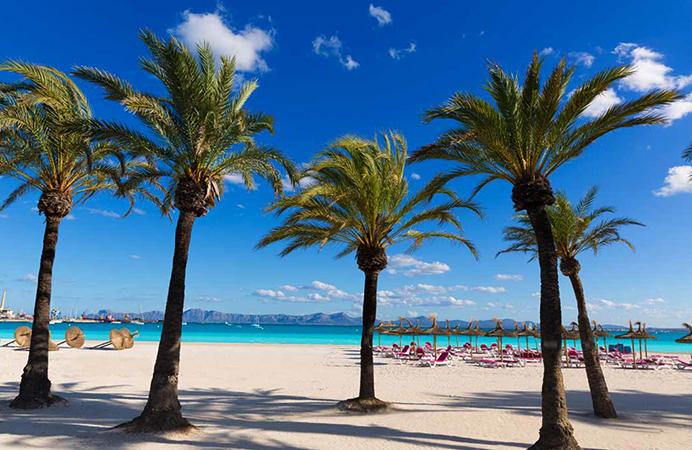 Плайя де Алькудия (Playa de Alcudia)