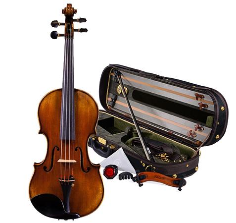 Скрипка и футляр
