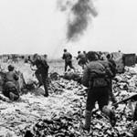 Интересные факты о Сталинградской битве