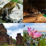 Самые красивые места Вьетнама