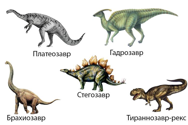 Некоторые виды динозавров