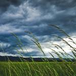 Самые интересные факты о ветре