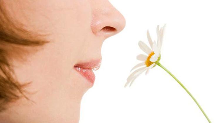 Вдыхание запаха