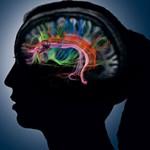 Самые интересные факты о памяти человека