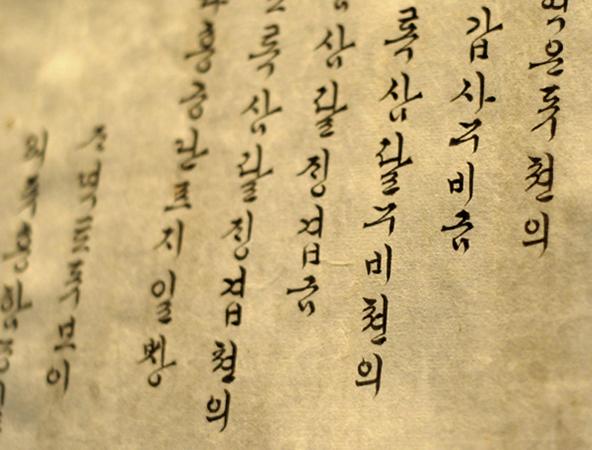 Текст на корейском