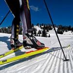 Интересные факты и данные про лыжи