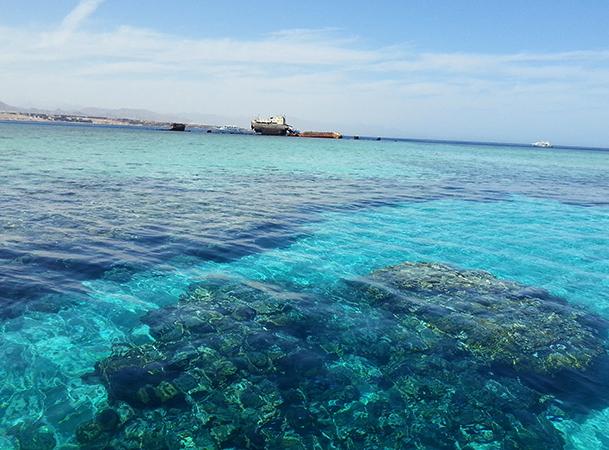 Соленое Красное море