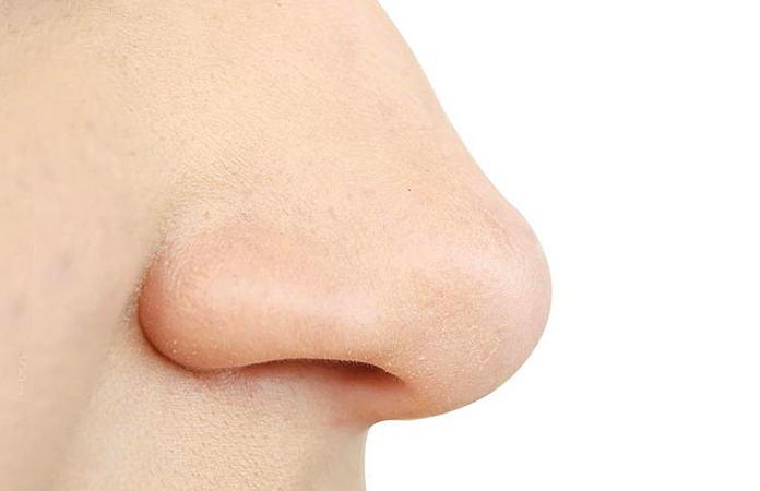Нос человека