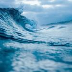 Самые интересные факты про океаны