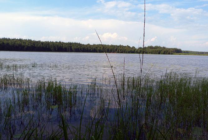 Ласковское озеро