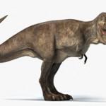Самые интересные краткие факты о динозавре Тираннозавр