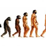 Интересные факты о происхождении человека