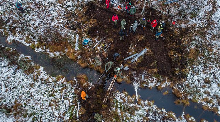 Люди на болоте