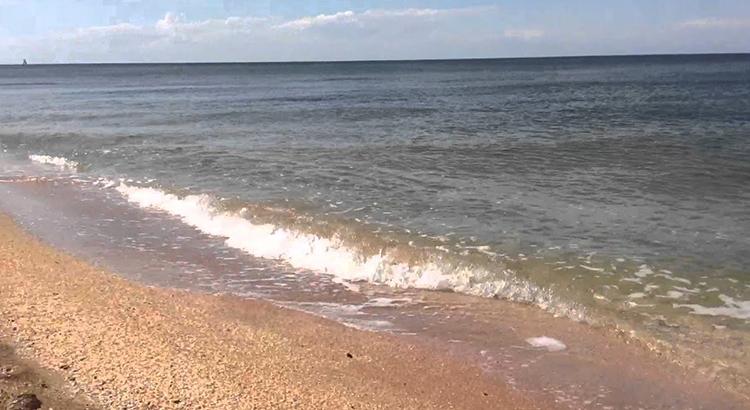 Мутная вода Азовского моря