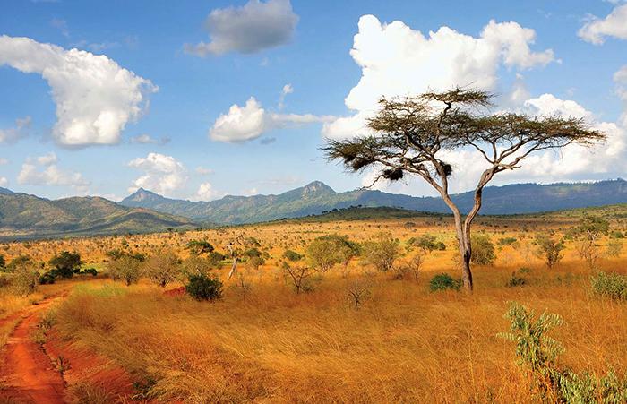 Территория Кении