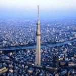 Интересные факты и сведения про город Токио