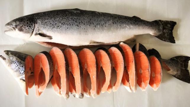 Лососевая рыба